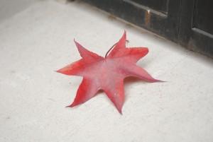 El otoño toca la puerta